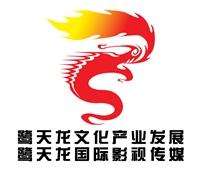 鹭天龙文化产业发展(香港)有限公司