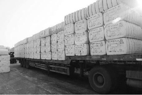 新疆棉花销售进度加快0.jpg