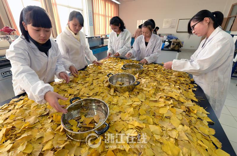 纯天然植物染料服装获国家10项专利1.jpg
