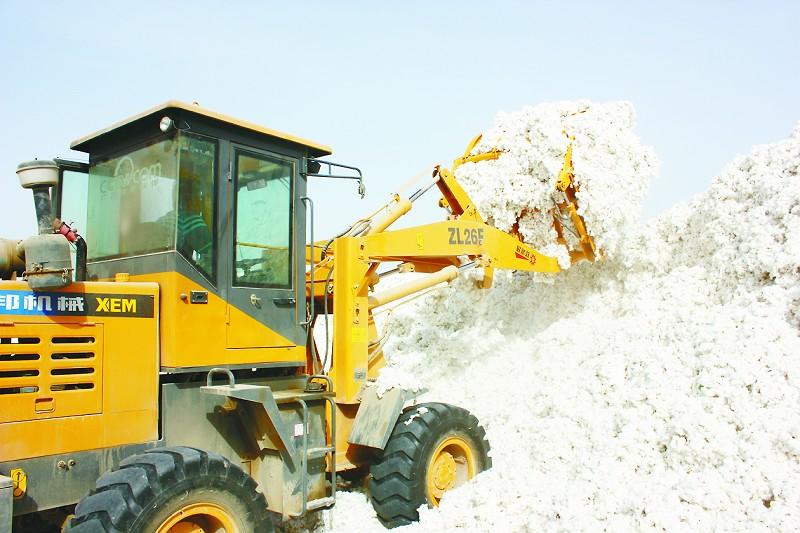 中国棉花价格将与国际接轨0.jpg