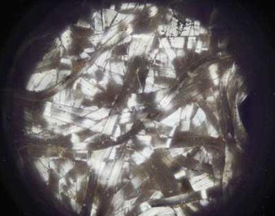 新型仿生纤维可制成超薄不透明服装0.png