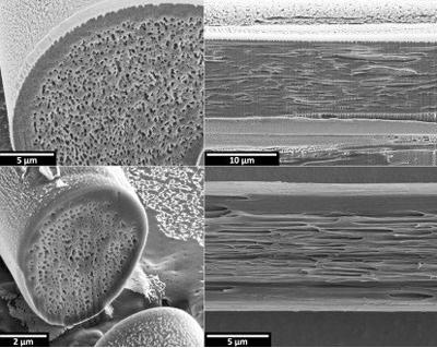 新型仿生纤维可制成超薄不透明服装1.png
